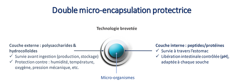Probiotiques Nutrixeal : double micro-encapsulation protectrice
